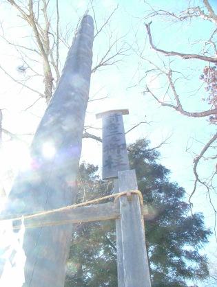 Maemiya's second pillar